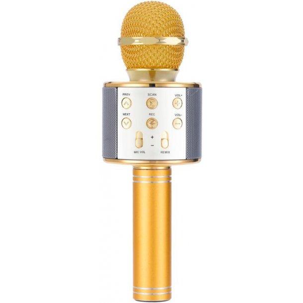 Karaoke Mikrofon og Bluetooth højtaler