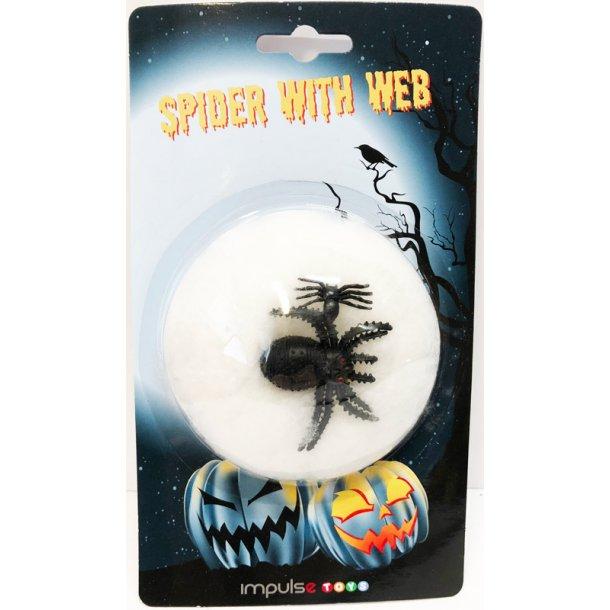 Edderkop med spind