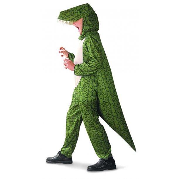 Dinosaur dragt str. 120 cm